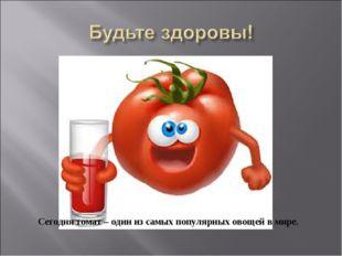 Сегодня томат – один из самых популярных овощей в мире.