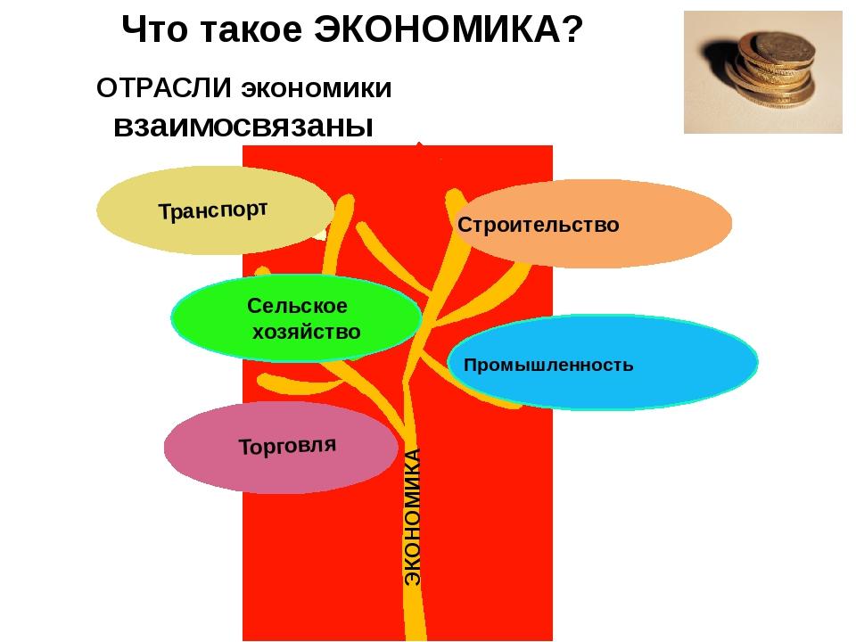 Что такое ЭКОНОМИКА? ЭКОНОМИКА ОТРАСЛИ экономики взаимосвязаны Промышленность...