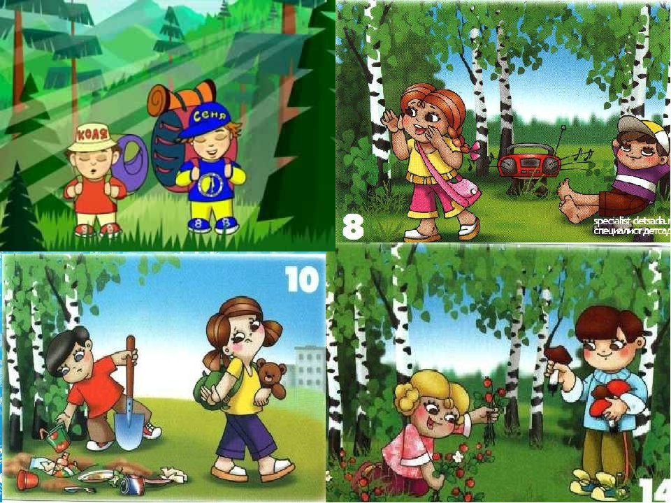 Правила поведения в лесу для детей доу в картинках