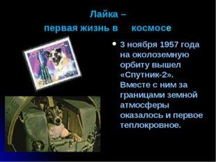 Лайка – первая жизнь в космосe 3 ноября 1957 года на околоземную орбиту вышел