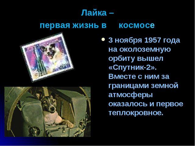 Лайка – первая жизнь в космосe 3 ноября 1957 года на околоземную орбиту вышел...