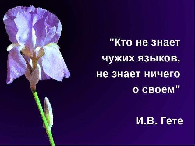 """""""Кто не знает чужих языков, не знает ничего о своем"""" И.В. Гете"""
