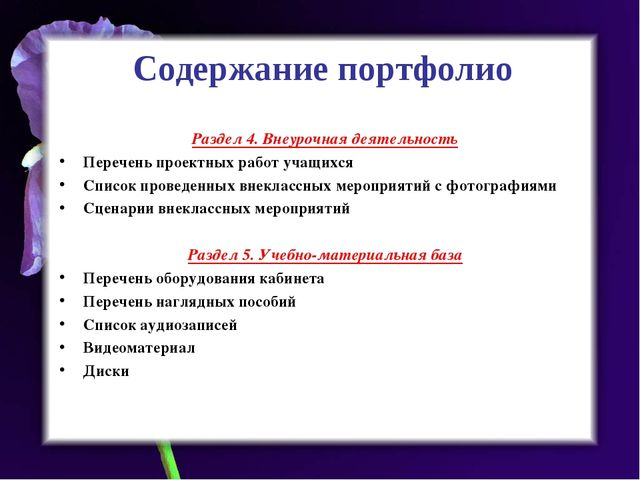 Содержание портфолио Раздел 4. Внеурочная деятельность Перечень проектных раб...