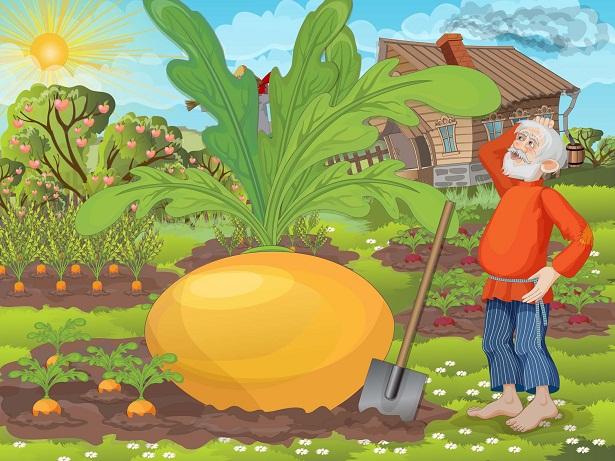 Картинка с огородом для детей, миражи