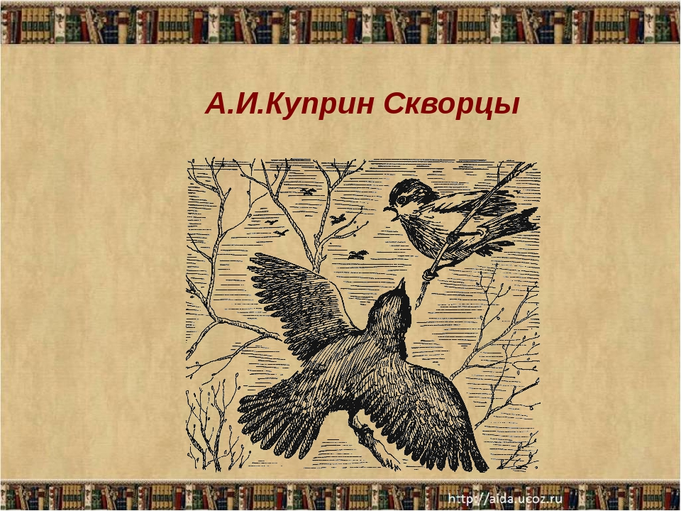 А.И.Куприн Скворцы