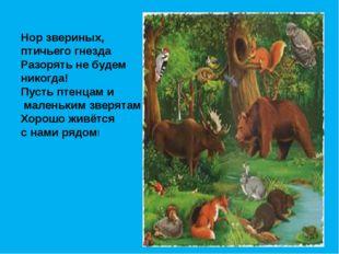 Нор звериных, птичьего гнезда Разорять не будем никогда! Пусть птенцам и мале