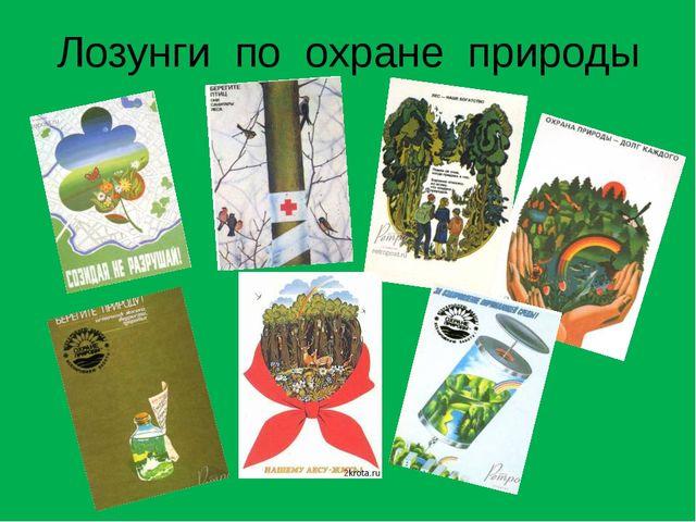 Лозунги по охране природы