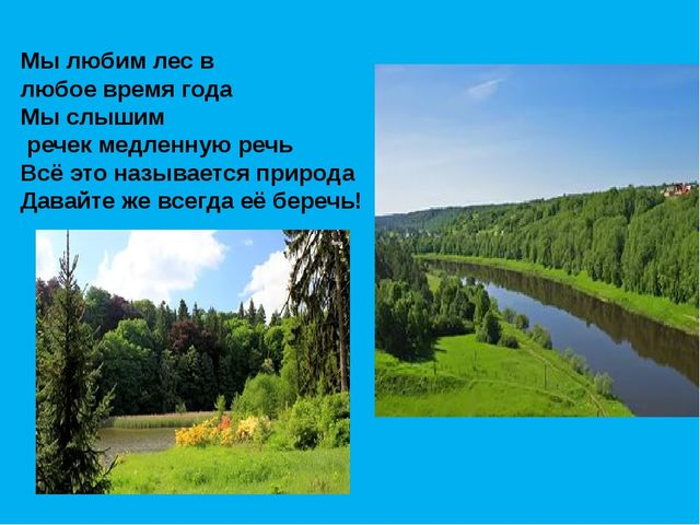 Мы любим лес в любое время года Мы слышим речек медленную речь Всё это называ...