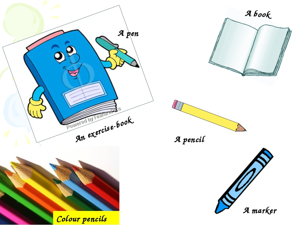 Colour pencils A book An exercise-book A pen A pencil A marker