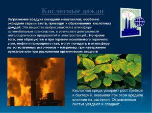Кислотные дожди Загрязнение воздуха оксидами неметаллов, особенно оксидами с