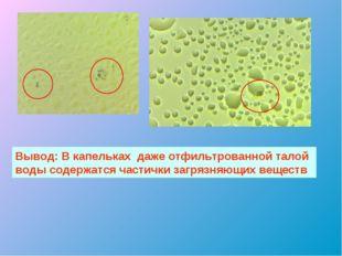 Вывод: В капельках даже отфильтрованной талой воды содержатся частички загряз