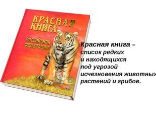 Красная книга – список редких и находящихся под угрозой исчезновения животных