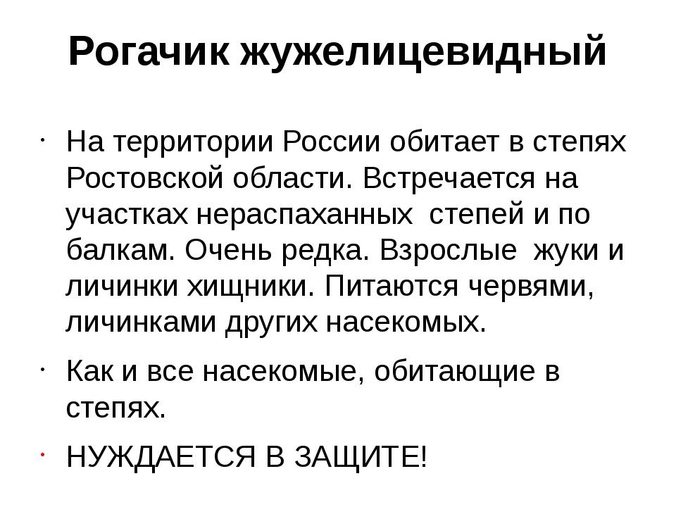 Рогачик жужелицевидный На территории России обитает в степях Ростовской облас...