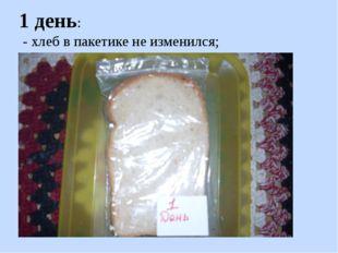 1 день: - хлеб в пакетике не изменился;