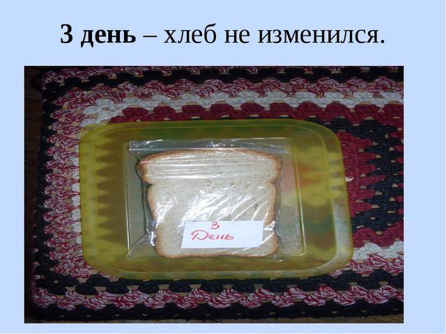 3 день – хлеб не изменился.