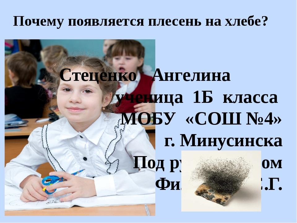 Почему появляется плесень на хлебе? Стеценко Ангелина ученица 1Б класса МОБУ...