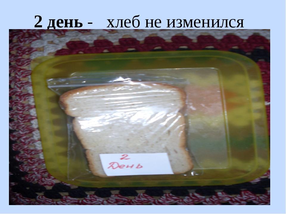 2 день - хлеб не изменился