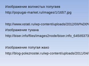 Изображение волнистых попугаев http://popugai-market.ru/images/1/1657.jpg ht
