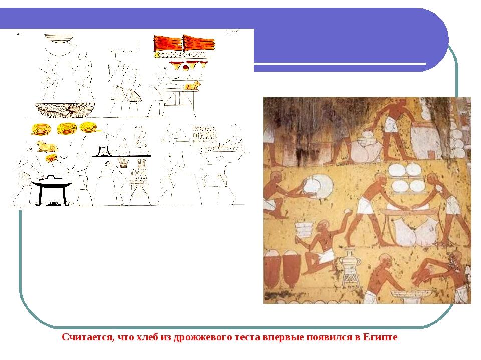 Считается, что хлеб из дрожжевого теста впервые появился в Египте