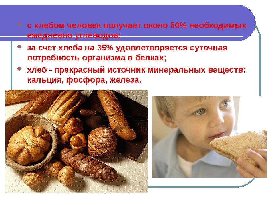 с хлебом человек получает около 50% необходимых ежедневно углеводов; за счет...