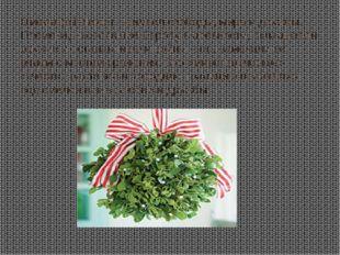 Омела (mistletoe) – символ свободы, мира и дружбы. Племена, населявшие Европу