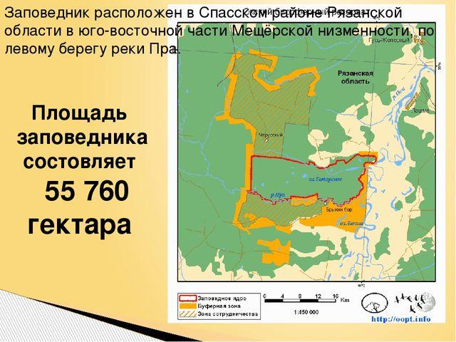 Площадь заповедника состовляет 55 760 гектара Заповедник расположен в Спасск...