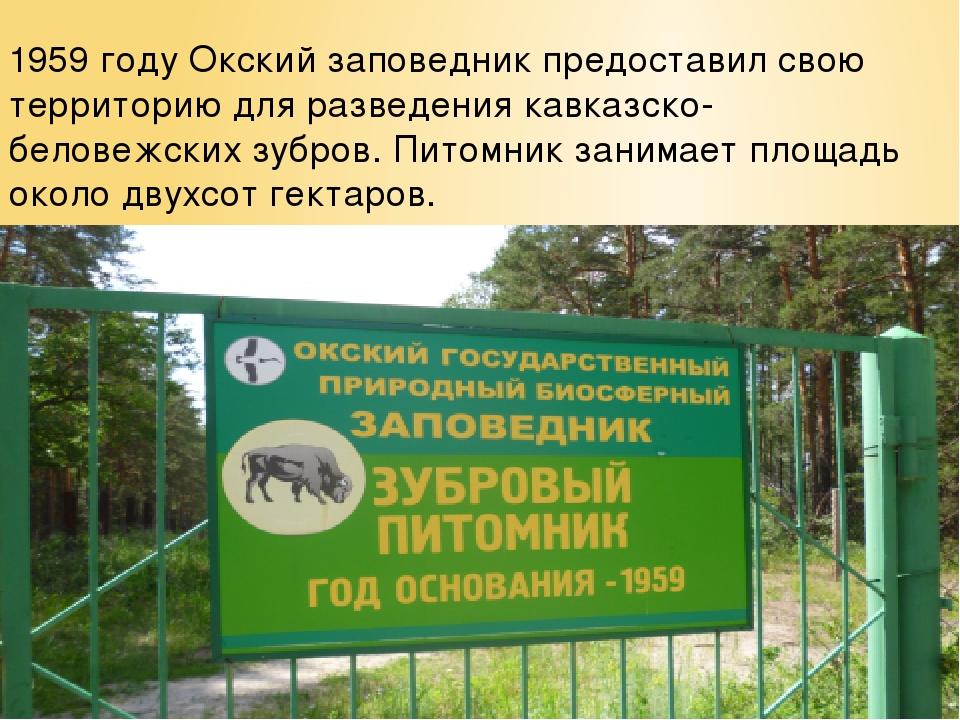 1959 году Окский заповедник предоставил свою территорию для разведения кавказ...
