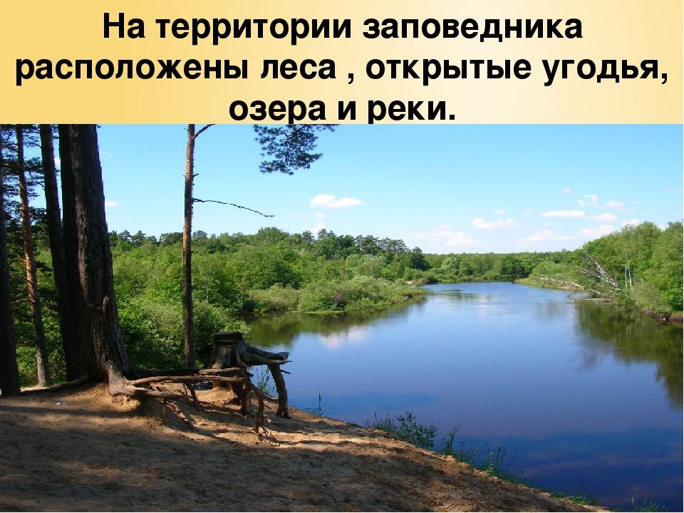 На территории заповедника расположены леса , открытые угодья, озера и реки.
