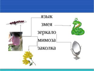 язык змея зеркало мимоза заколка