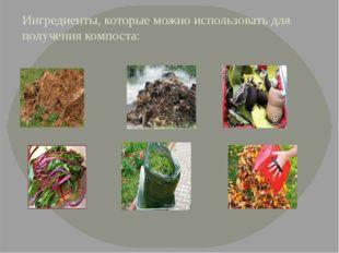 Ингредиенты, которые можно использовать для получения компоста: