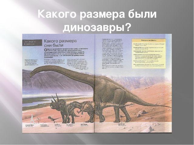Какого размера были динозавры?
