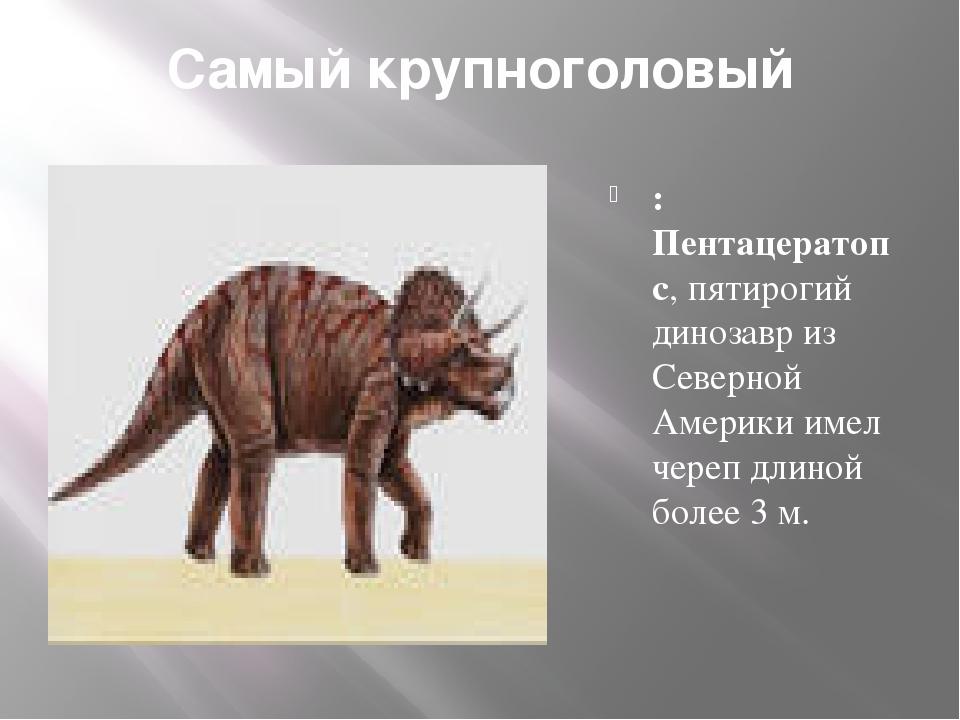 Самый крупноголовый : Пентацератопс, пятирогий динозавр из Северной Америки и...