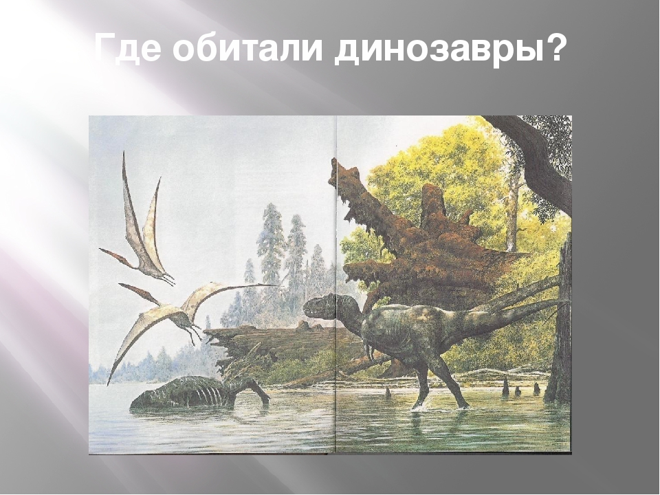 Где обитали динозавры?
