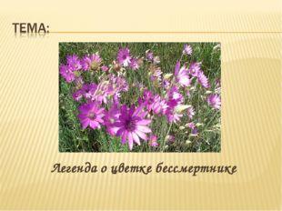 Легенда о цветке бессмертнике