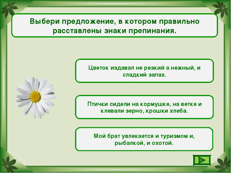 Выбери предложение, в котором правильно расставлены знаки препинания. Цветок...