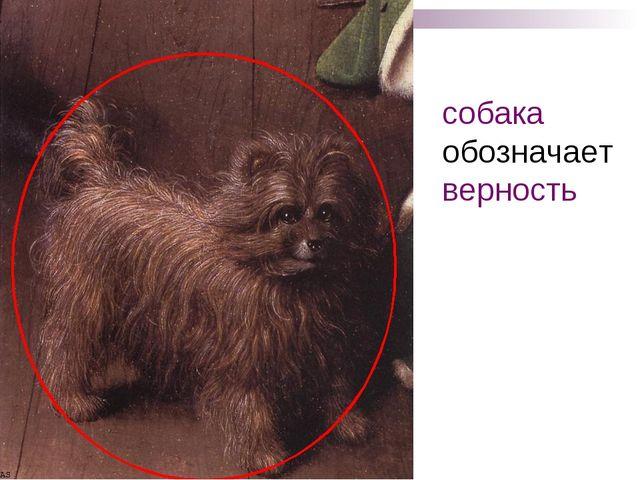 собака обозначает верность