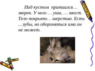 Под кустом притаился… зверек. У него … уши, … хвост. Тело покрыто… шерстью.