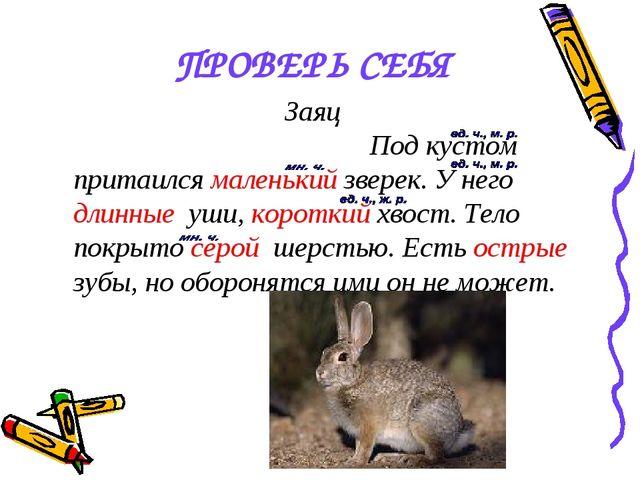 ПРОВЕРЬ СЕБЯ Заяц Под кустом притаился маленький зверек. У него длинные уши,...