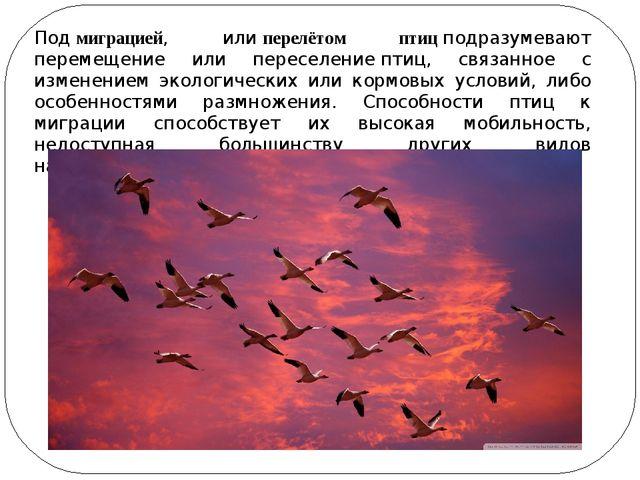 Подмиграцией, илиперелётом птицподразумевают перемещение или переселениеп...