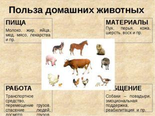 Польза домашних животных МАТЕРИАЛЫ Пух, перья, кожа, шерсть, воск и пр. ПИЩА