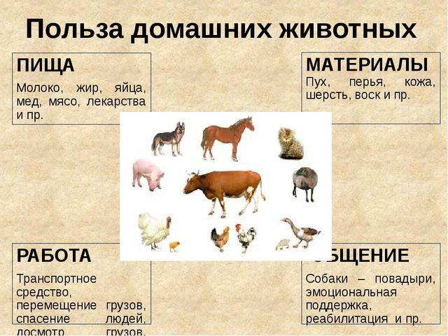 Польза домашних животных МАТЕРИАЛЫ Пух, перья, кожа, шерсть, воск и пр. ПИЩА...