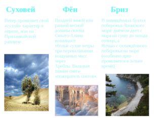 Суховей Фён Бриз Ветерпроявляет свой «сухой» характер в апреле, мае на Приха