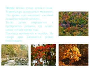 Осень: тёплая, сухая, ясная и тихая. Температура понижается медленно. Это вр
