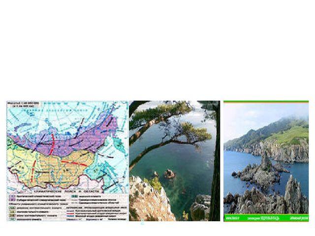 Климат Приморского края относится к области умеренного муссонного влажного кл...