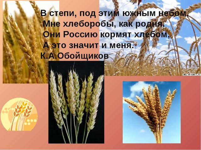 В степи, под этим южным небом, Мне хлеборобы, как родня. Они Россию кормят хл...