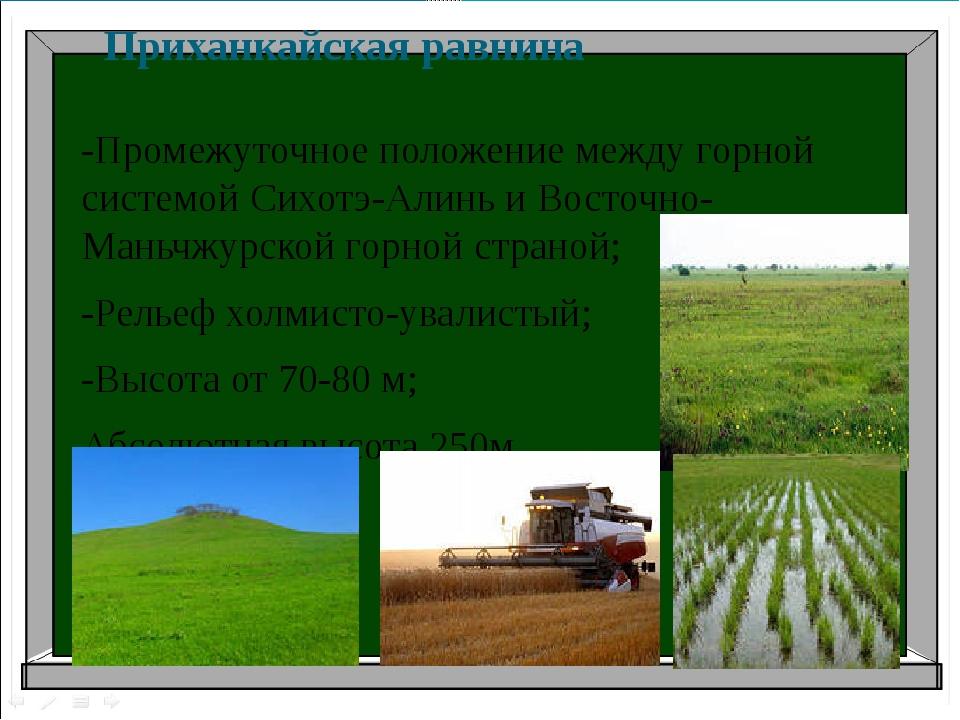Приханкайская равнина -Промежуточное положение между горной системой Сихотэ-А...