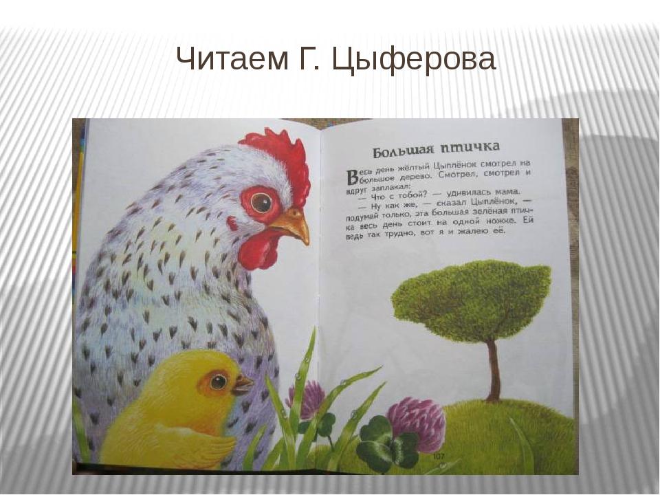 Читаем Г. Цыферова