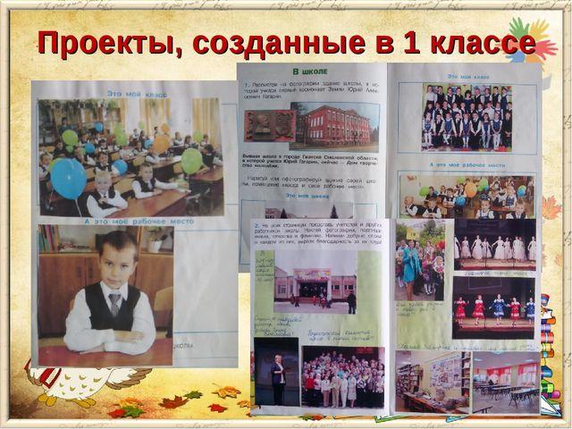Проекты, созданные в 1 классе «Первый раз в 1 класс» коллективный фотоальбом...
