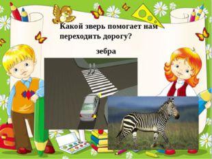 Какой зверь помогает нам переходить дорогу? зебра