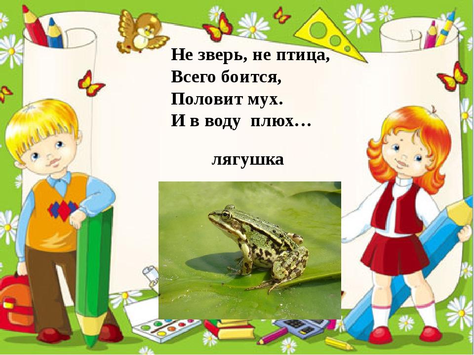 Не зверь, не птица, Всего боится, Половит мух. И в воду плюх… лягушка